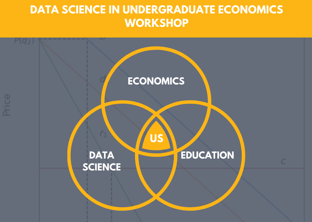 Data Science in Undergraduate Economics - image diagram