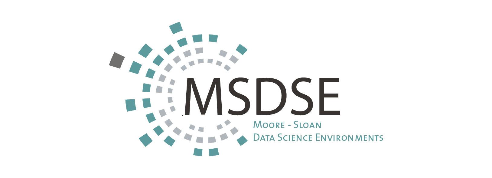 MSDSE Banner logo