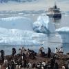 Vasquez-Antarctic-thumbnail-square - Photo by Iryna Dronova