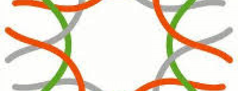 Cal Academy Logo