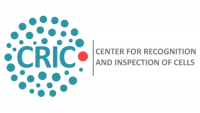 CRIC - BIDS project page banner 450x254