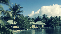 Davies - Moorea Biocode, Gump Station - project page banner