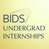 BIDS Undergraduate Internships - logo thumbnail square 100 4web