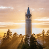Berkeley sunset - CDSS National Workshop banner logo