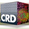 LBL CRD News - logo icon thumbnail square