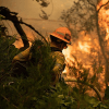 Fireperson in woods on fire - thumbnail square