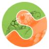 scikit-image logo thumbnail